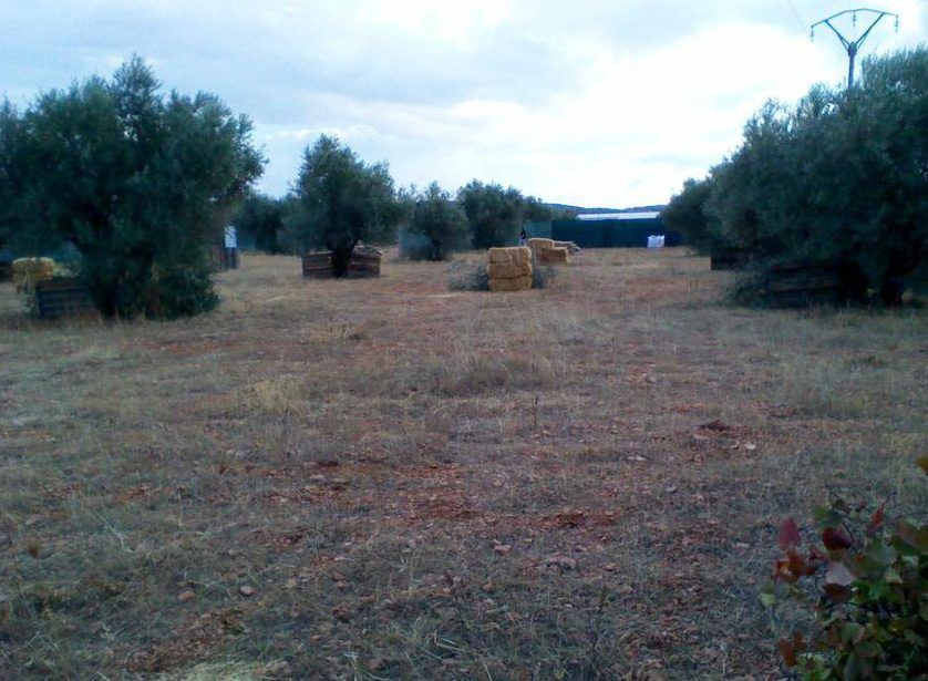 Paintball Ciudad Real
